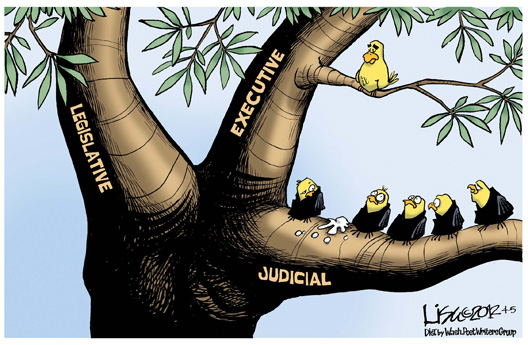 Cartoon The Three Branches Of Government Illinois Review Silhouette of three owls on branch. illinois review