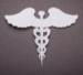 Medicaid_2_small