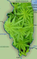 Illinois-marijuana