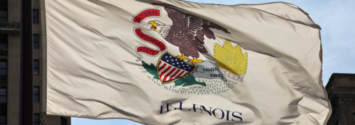 021 Illinois state flag