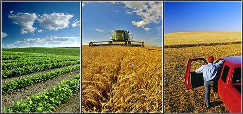 Agriculture-multi