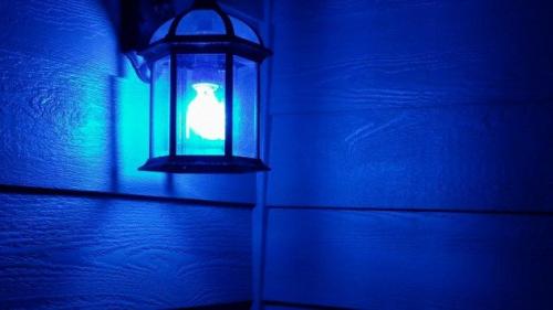 Blue Light Fixture
