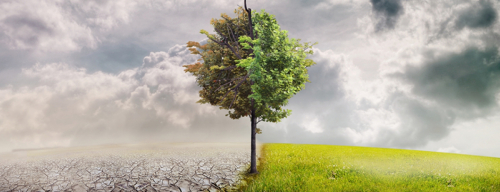 Climate-change-banner