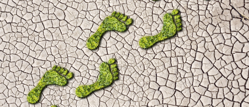 Carbon_Footprint_Shutterstock-e1518615201209