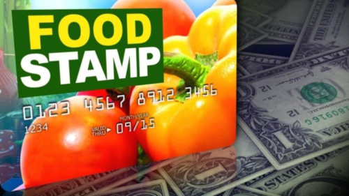 Food+stamps33